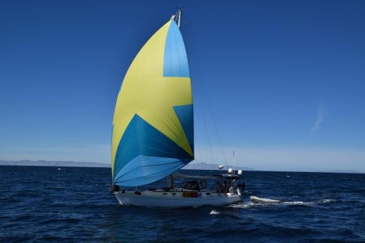 Scot Free Eh under sail