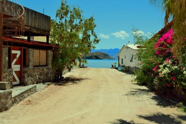 Gringo community Bahia Concepcion