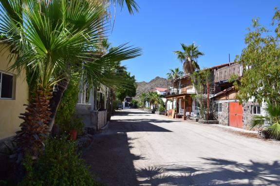 Gringo's community Bahia Concepcion