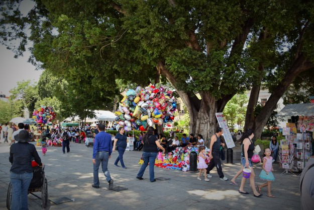 El Zocalo de Oaxaca